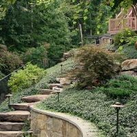 landscaping design at timber lake in oakton